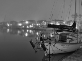 Night Fog in the Harbor